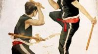 La Eskrima Filipina. Aunque su origen está fundamentado en las armas de filo, espadas, dagas, machetes, etc, los estilos de lucha filipinos han sufrido grandes cambios a lo largo de […]